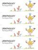 Science Star Certificates - Birds