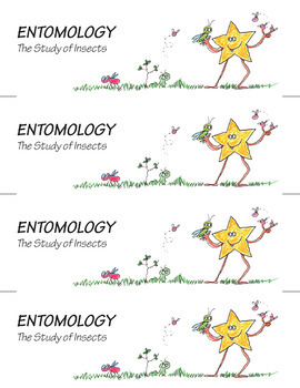 Science Star Certificates - Insects