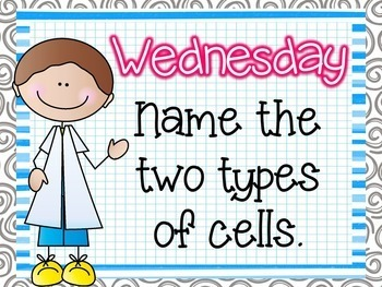 Science Starters ~ All About Cells ~