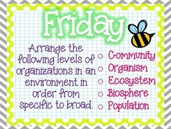 Science Starters or Task Cards ~ Interdependence ~