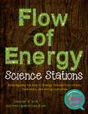 Science Stations - Flow of Energy (Food Webs, Chains, and Energy Pyramids)