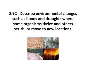 Science TEKS 3.9C Environmental Changes PPT