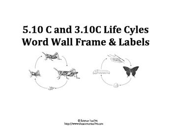 Science TEKS 5.10C & 3.10C Word Wall Labels