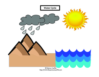 Science TEKS 5.8B & 4.8B Water Cycle Word Wall Labels and Student Organizer