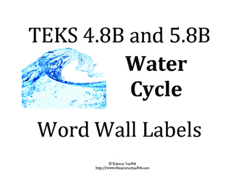 Science TEKS 5.8B & 4.8B Water Cycle Word Wall Labels and