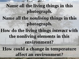 Science TEKS 5.9A, 5.9C (Living/Nonliving Interactions, AND Effects of Change)