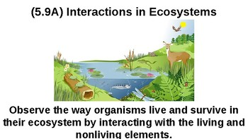 Science TEKS 5.9A REVIEW (Living/Nonliving Interactions)