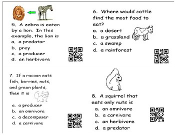 Science Task Cards -- Adaptations and Food Chains
