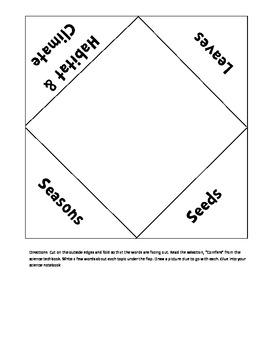 Science Techbook - 3rd Grade - Conifers Foldable 2