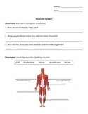 Anatomy/Human Body Systems: Muscular System Test/ Quiz/ Worksheet