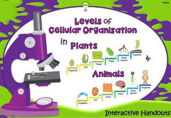 Science: The Levels of Cellular Organization Handouts for