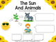 Science- The Sun During Summer, booklet