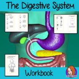 The Digestive System - Class Work Book, Interactive Notebook