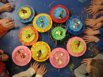Science Through Visual Arts: Bird Nest