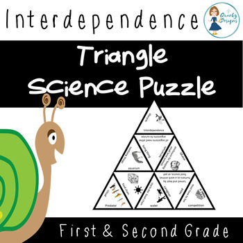 Science Triangle Puzzle: Interdependence