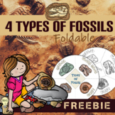 FREE Types of Fossils Foldable Wheels for Interactive Scie