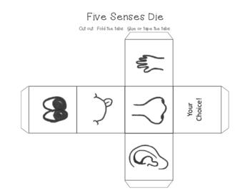 Science Unit 2 Five Senses