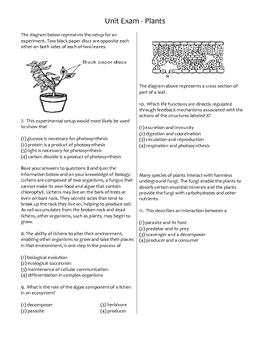 High School Biology Unit Exam - Plants