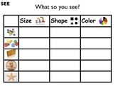 Science Unit: Properties/Characteristics of Matter with Workbook