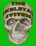 Science Unit: The Skeletal System
