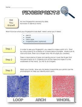Science Units Bundle - Cells, Fingerprints, Sound, Scientific Method, and More!