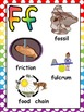 Science Vocabulary Alphabet Chart Posters