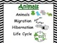 Science Vocabulary Anchor Chart~ Animals