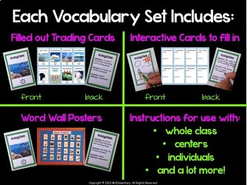 Science Vocabulary Bundle