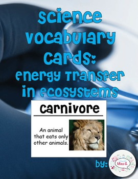 Energy Transfer in Ecosystems Science Vocabulary Cards (Large)