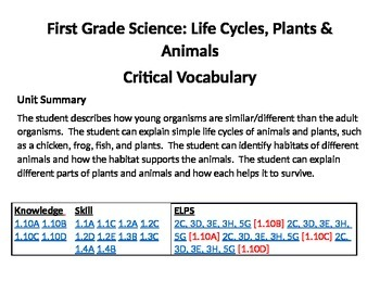 Science Vocabulary Cards - Life Cycles, Plants & Animals