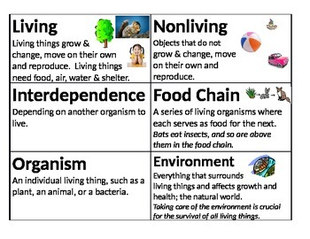 Science Vocabulary Cards - Organisms & Environment