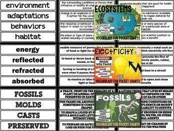 Science Pocket Chart Vocabulary (EDITABLE BUNDLE)