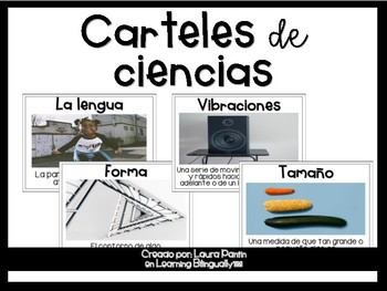 Science Vocabulary Posters in Spanish