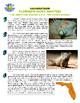 Science Vocabulary Puzzle & Sort #3