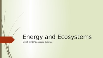Science Vocabulary Unit 6 Energy and Ecosystems 4th Grade HMH Tennessee Science