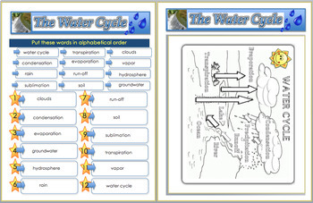 Science - Water Cycle PDF (No Prep) 40 Pages