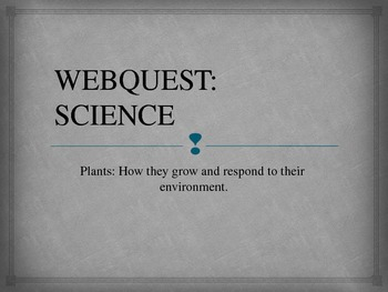 Science Webquest