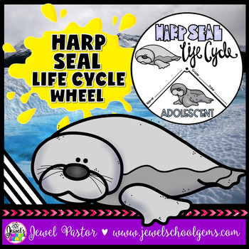 Science Winter Animal Life Cycle Activities (Arctic Animal Life Cycle Craft)
