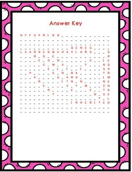 Science Word Search BUNDLE