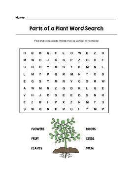 Science Word Search Bundle Pack Set 2 (Grades K-3)