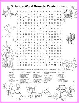 Science Word Search: Environment