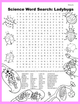 Science Word Search: Ladybugs