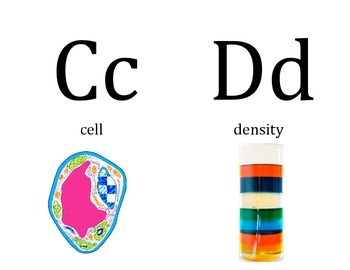 Science Word Wall Alphabet