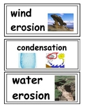 Science Word Wall Cards 3rd-5th