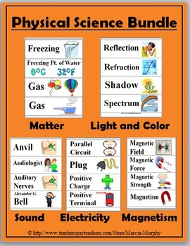 Science Word Wall Bundle - 650 Illustrated Cards - 50% Discount