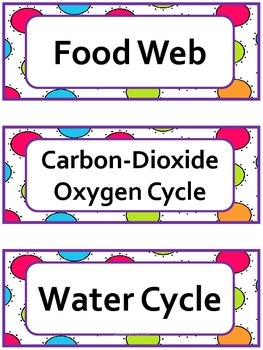 Science Word Wall Cards:Life Science