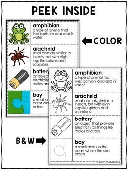 Word Wall - Science Vocabulary