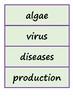 Science Word Wall - Microorganisms Micro-organisms - Flash Words - Vocabulary