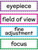 Science Word Wall - Microscope Use