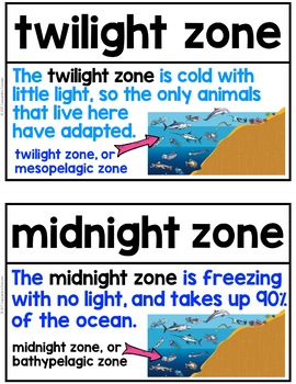 Science Word Wall: Ocean/Ocean Animals Word Wall - 61 Ocean Vocabulary Terms